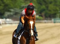 Dullahan, Union Rags gear up for Belmont Stakes