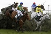 British horse racing head warns against knee-jerk reaction after 2 horses die in National