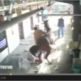 Man gets too close to stable…watch what happens