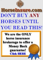 HorseInsurance.com Bloodstock & Speciality Insurance