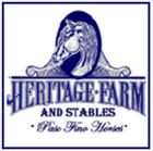 Find the perfect PASO FINO at Heritage Farms & Stables.