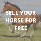 SELL YOUR HORSE FOR FREE