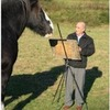 Get A Portrait Of Your Horse