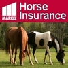 Insuring Horses and Businesses for over 40 Years